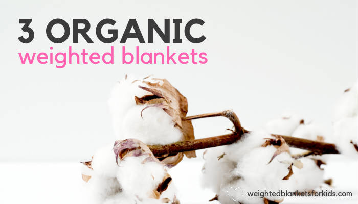 Cotton, overlaid with text reading '3 organic weighted blankets'. Photo by Marianne Krohn on Unsplash.
