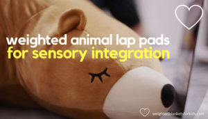 A stuffed animal, overlaid with text reading 'weighted animal lap pads for sensory integration'. Photo by Anastasia Dulgier on Unsplash.